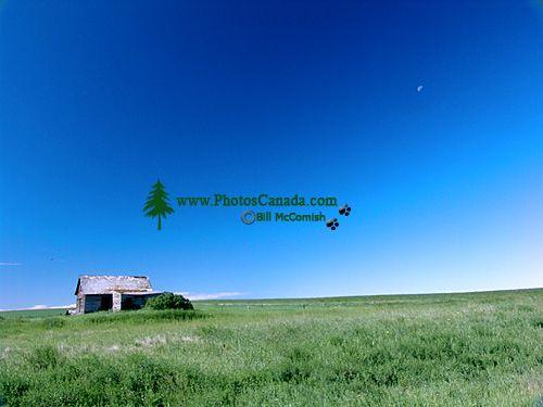 Alberta Prairies, Canada 17
