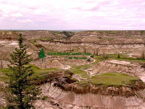 Drumheller, Dinosaur Capital of Canada, Alberta 11