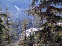 Alta Lake Road 36