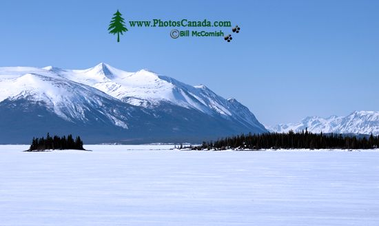 Atlin, Northern British Columbia, CM11-08