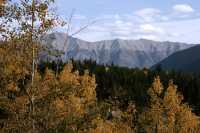 Banff National Park, Alberta, Canada CM11-32