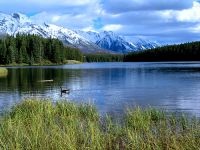 Johnson Lake, Banff National Park, Alberta, Canada 15