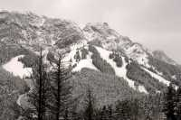 Mount Norquay, Banff National Park, Alberta, Canada CM11-47