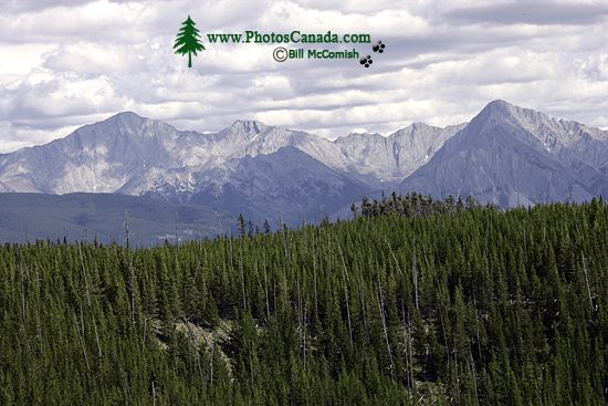 Banff National Park, 2011, Alberta, Canada CM11-004