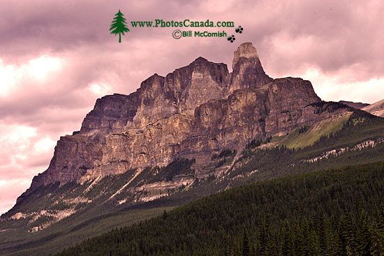 Castle Mountain, Banff National Park, 2011, Alberta, Canada CM11-010