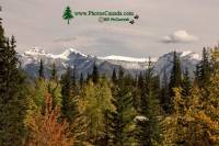 Highlight for Album: Banff National Park , Fall 2010 Photos, Alberta, Canadian National Parks Stock Photos