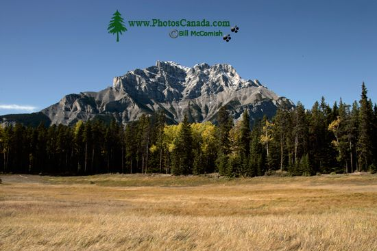 Banff National Park, Fall 2010, Alberta, Canada CM11-015