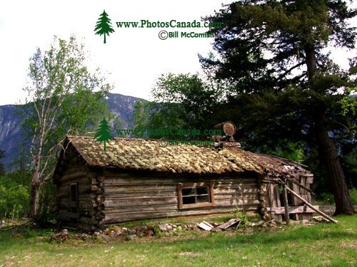 Bella Coola, Abandoned Homestead, British Columbia, Canada 05