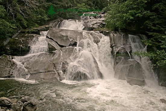 Bella Coola, Clayton Falls, British Columbia, Canada CM11-001