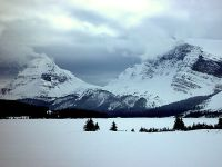 Bow Lake, Icefields Parkway, Jasper National Park, Alberta, Canada 03