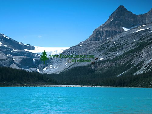 Bow Lake, Icefields Parkway, Jasper National Park, Alberta, Canada CM11-07
