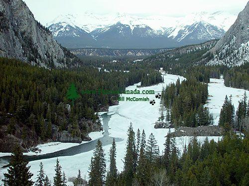 Bow River Valley, Banff National Park, Alberta, Canada 01