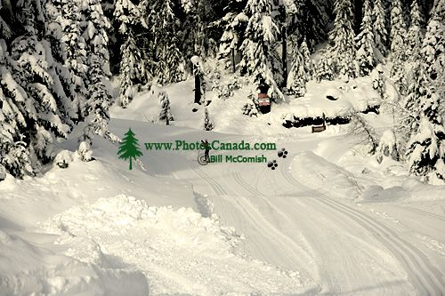 Callaghan Valley, Cross Country Skiing, Whistler, British Columbia, Canada, CM11-05