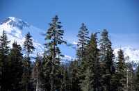 Callaghan Valley, British Columbia, Canada, CM11-14