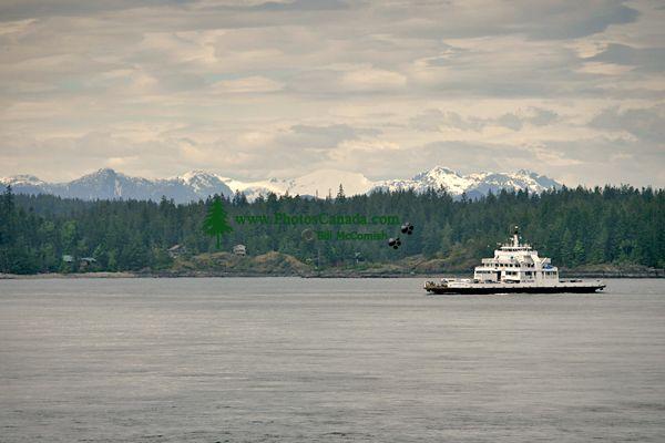 Campbell River, Vancouver Island, British Columbia, Canada CM11-18