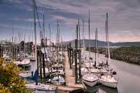 Campbell River, Marina,Vancouver Island, British Columbia, Canada CM11-20