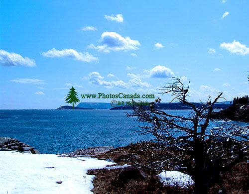 Cape Breton Coastline, Cape Breton Highlands National Park, Nova Scotia, Canada  08