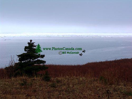 Highlands Plateau, Cape Breton Highlands National Park, Nova Scotia, Canada  03