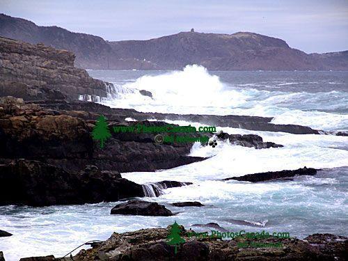 Cape Spear Coastline, Newfoundland, Canada 02
