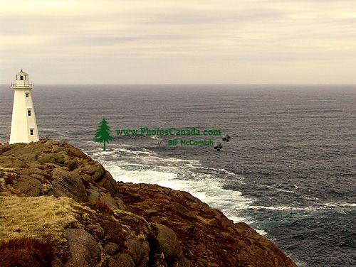 Cape Spear Lighthouse, Newfoundland, Canada 04