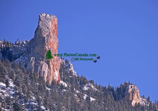 Marble Canyon, British Columbia, Canada CM11-01