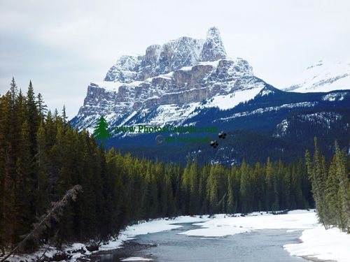 Castle Mountain, Banff National Park, Alberta, Canada 02