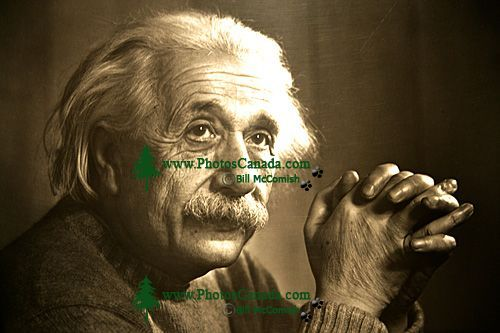 Albert Einstein Photo By Yousef Karsh, Displayed in Chateau Laurier Lobby (Photo Not For Sale) 07