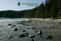 Highlight for Album: China Beach, Vancouver Island, British Columbia Stock Photos