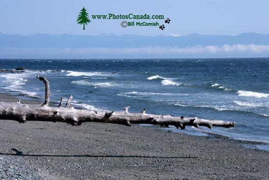 China Beach, Strait of Juan de Fuca, Vancouver Island CM11-005
