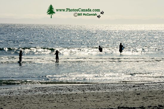 China Beach, Strait of Juan de Fuca, Vancouver Island CM11-006