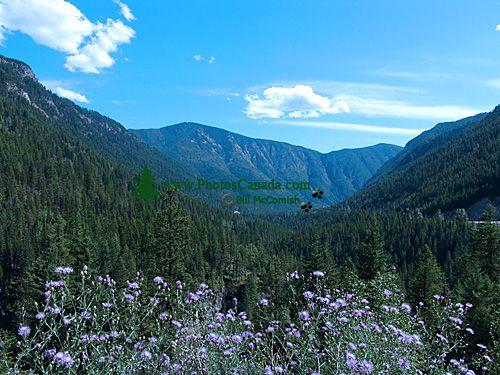 The Kootenays,  Crowsnest Highway, British Columbia, Canada 07