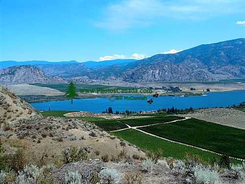 Osoyoos, Crowsnest Highway, British Columbia, Canada 04