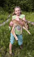 Deer Fawn held by child CM11-025