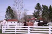 Douglas Lake Ranch, British Columbia, Canada CM11-006
