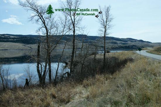 Douglas Lake Ranch, British Columbia, Canada CM11-009