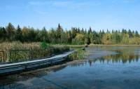 Highlight for Album: Elk Island National Park of Canada Photos, Alberta, Canada, Canadian National Parks Stock Photos