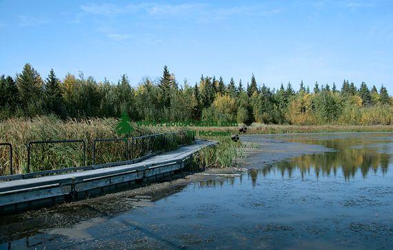 Elk Island National Park, Alberta, Canada CM-03