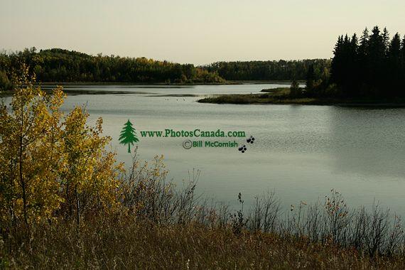 Elk Island National Park, Alberta, Canada CM-04
