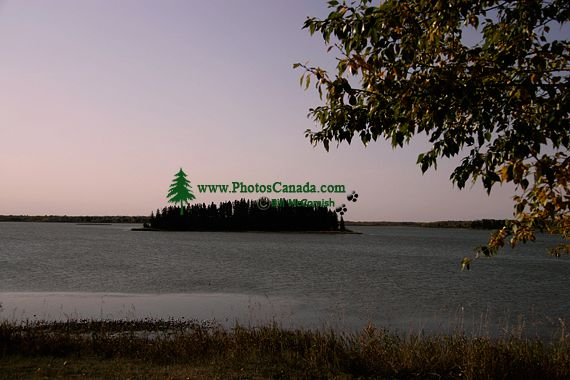 Elk Island National Park, Alberta, Canada CM-08