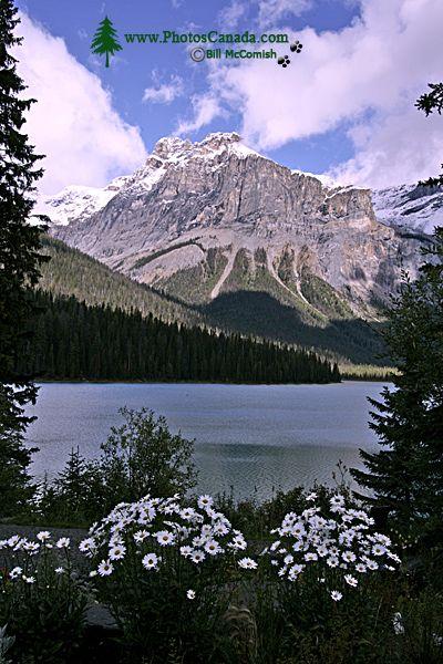 Emerald Lake, Yoho National Park, 2011,  British Columbia, Canada CM11-004