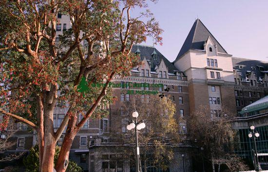 Empress Hotel, Victoria, Vancouver Island, British Columbia, Canada CM11-05