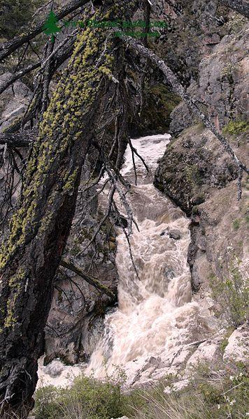 Fintry Falls, Okanagan Lake, British Columbia, Canada CM11-007
