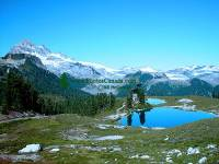 Highlight for Album: Garibaldi Park Photos, Squamish, British Columbia Stock Photos