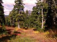 Mt Garibaldi Provincial Park, British Columbia, Canada  17