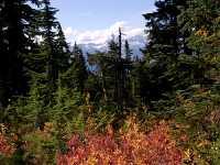 Mt Garibaldi Provincial Park, British Columbia, Canada  16