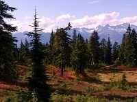 Mt Garibaldi Provincial Park, British Columbia, Canada  15