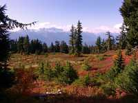 Mt Garibaldi Provincial Park, British Columbia, Canada  13