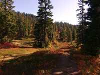 Mt Garibaldi Provincial Park, British Columbia, Canada  04