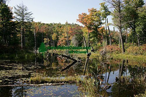 Gatineau Park, Ottawa, Canada's Capital Region CM11-02