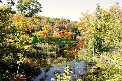 Gatineau Park, Ottawa, Canada's Capital Region CM11-03